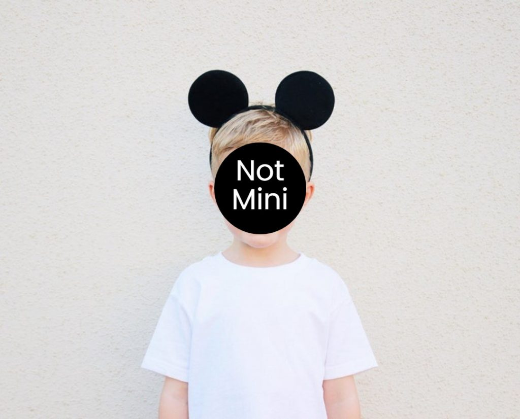 toddler mickey ears for Walt Disney World, explorationmotherhood.com