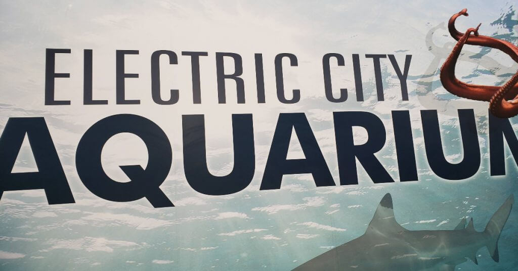 Electric City Aquarium