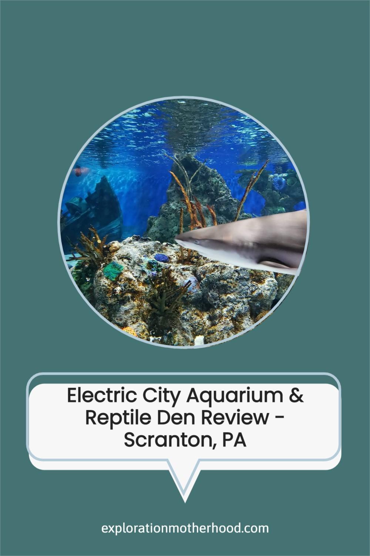 Visit Electric City Aquarium & Reptile Den - Scranton, PA
