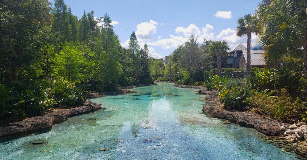 stream at Disney Springs