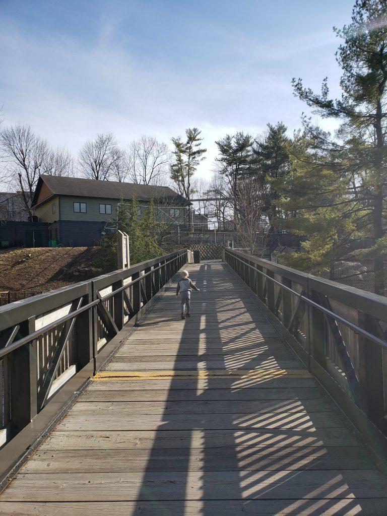 Bridge at ZooAmerica where you can see bears
