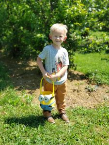 toddler standing with Minion bucket in front of blueberry bushes