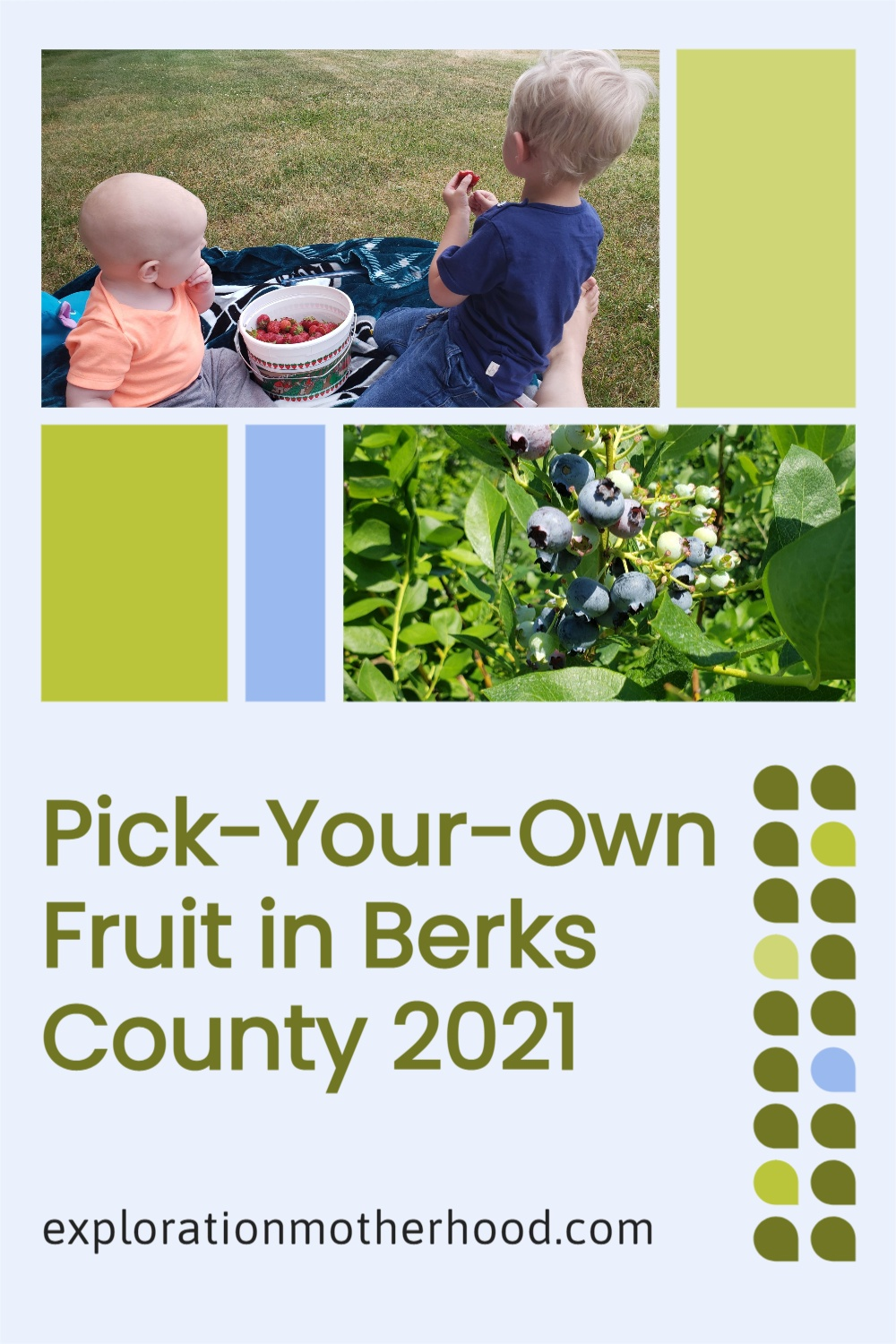 Pick-Your-Own Fruit in Berks County 2021